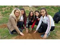 Fidanlar, Daha Yeşil Bir Okul İçin Dikildi