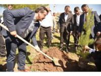 Başkan Atilla, 15 Temmuz Şehitleri Anısına Fidan Dikti