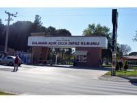 Dalaman'da Fetö Operasyonunda 26 Gözaltı