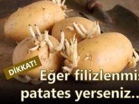 Eğer filizlenmiş patates yerseniz.