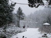 Gümüşhane'de Lapa Lapa Kar Yağdı
