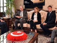 Danimarka Mülteci Konseyinden Türkiye övgüsü