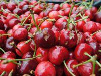 Fransa'dan Türk ürününe yasak kararı...