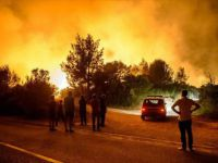 Karadağ, Hırvatistan ve Bosna Hersek'te Orman Yangınları