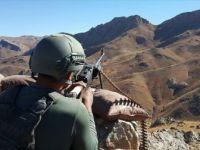 Siirt'te terör örgütüne darbe