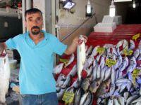 Samsunlu Balıkçıların Umudu 1 Eylül