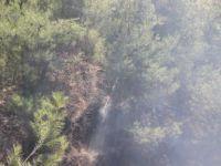 Aydın'da Ormanlık Alanda Başlayan Yangın Tarım Arazilerine Zarar Verdi