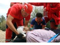 Dal Kesmek İçin Çıktığı Ağaçtan Düşüp Yaralandı