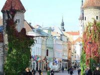 Estonya'dan bir ilk 'Topraksız' Ülke Olmaya Hazırlanıyor