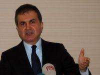 AB Bakanı Çelik Almanya'da ki Türkiye karşıtı partileri uyardı!