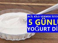 Acil Kilo Vermek İsteyenlere özel 5 günlük yoğurt diyeti!