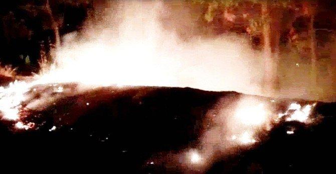 Aydın'da Dilek Balonu Mesire Alanında Yangın Çıkarttı!