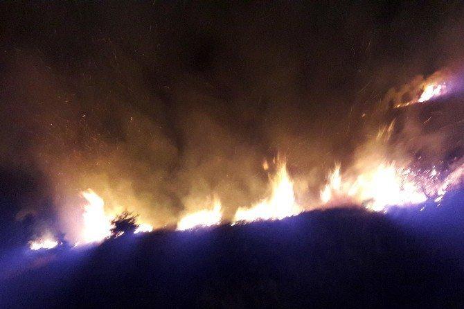 Gümüşhane'de İki Ayrı Orman Yangını