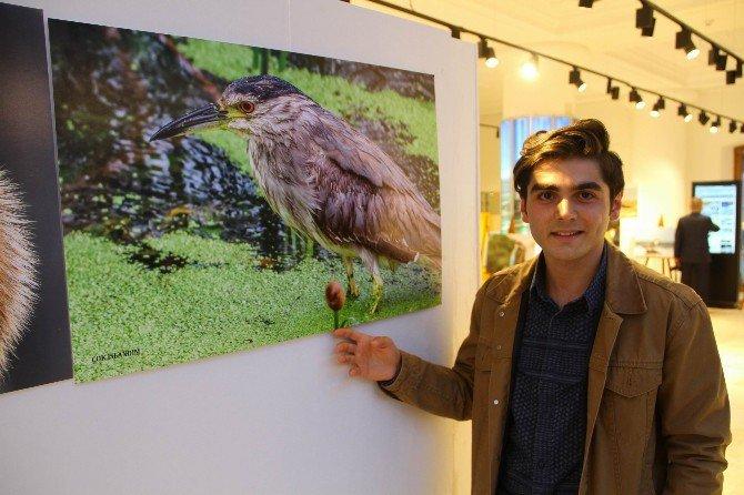 Samsunlu Küçük Fotoğrafçı Alihan Aktürk'ten Büyük Sergi