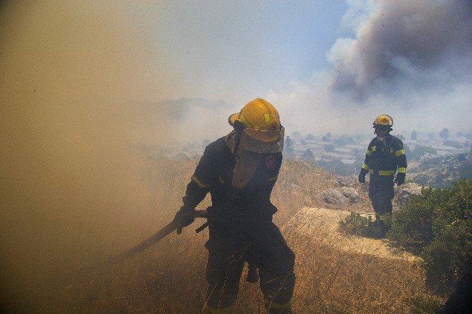 Güney Afrika Cape Town'da Ümit Burnu'ndaki Yangın Söndürülemiyor