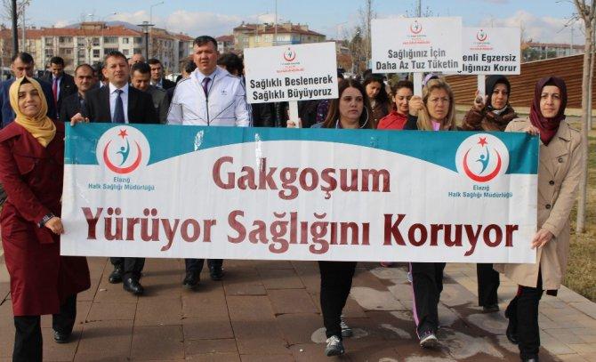 Sağlık Çalışanları, Sağlık İçin Yürüdü
