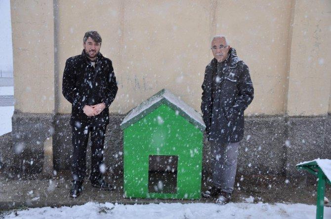 Yozgat'ta Sokak Hayvanları Sıcak Yuvalarına Kavuştu