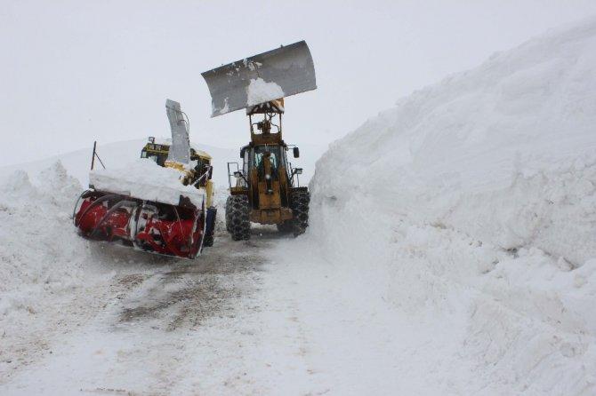 Muş'ta Çığ Düşen Bölgede Karla Mücadele