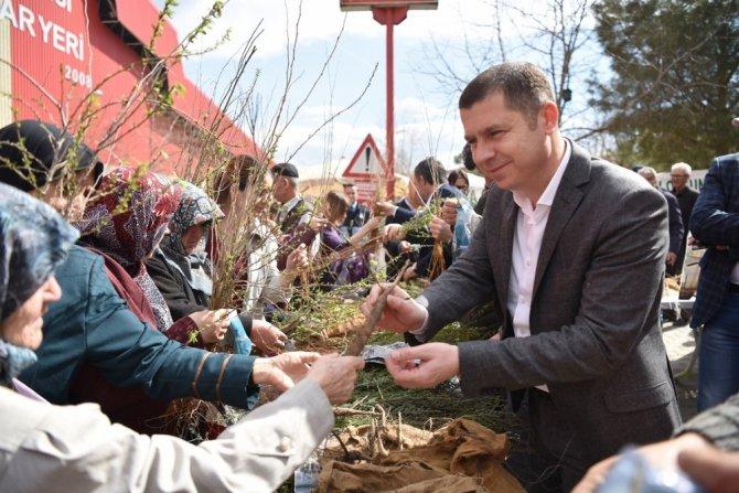 Çan'da Binlerce Fidan Dağıtıldı