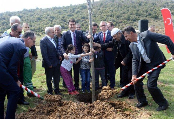 Osmangazi'den 1 Milyon Fidan