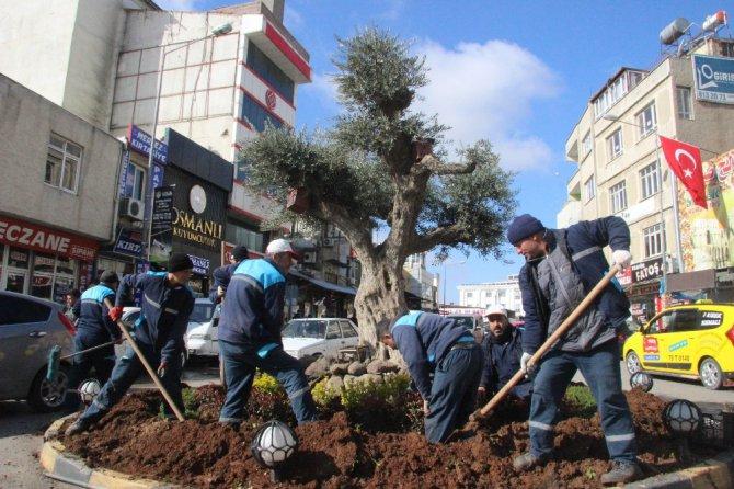 Kilis'te Kavşak Park Ve Refüjlere Çiçek Ekimi Sürüyor