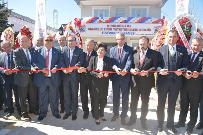 Kırklareli'nde Hayvan Hastanesi Açıldı
