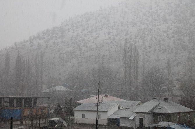 Kar, Beytüşşebap'ı Beyaza Bürüdü