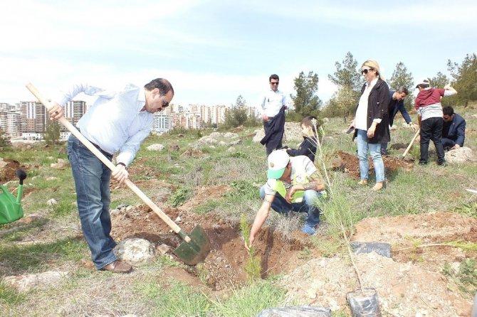 15 Temmuz Şehitleri İçin Hatıra Ormanı Oluşturuldu