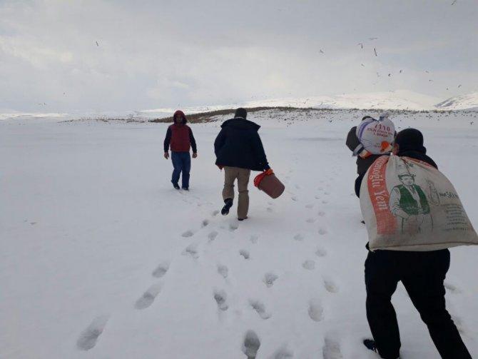 Kars'ta Kuşlara Yem Bırakıldı