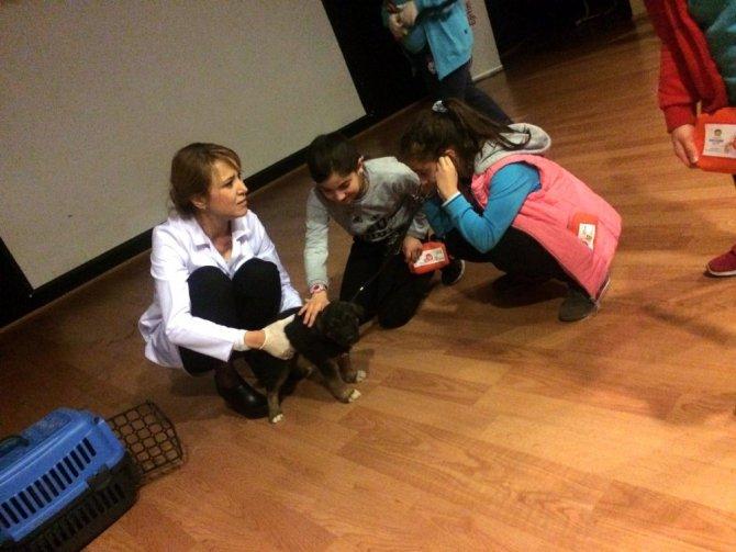 Küçük Çınarlara Hayvan Sevgisi Anlatıldı