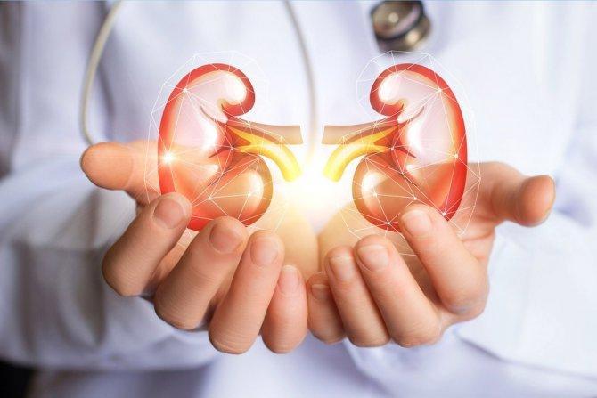 Böbrek Kanserinin Sorumlu Üçlüsü: Sigara, Hipertansiyon Ve Obezite