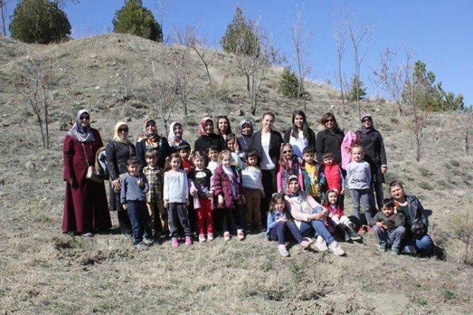 Sungurlu'da Minik Öğrenciler Fidan Dikti